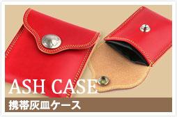 c_case_ash