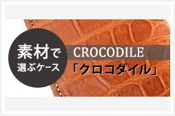 c_case_crocodile