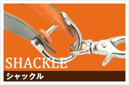 c_keyring_shackle